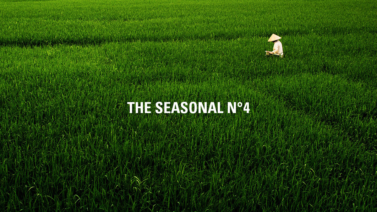 The Seasonal N° 4