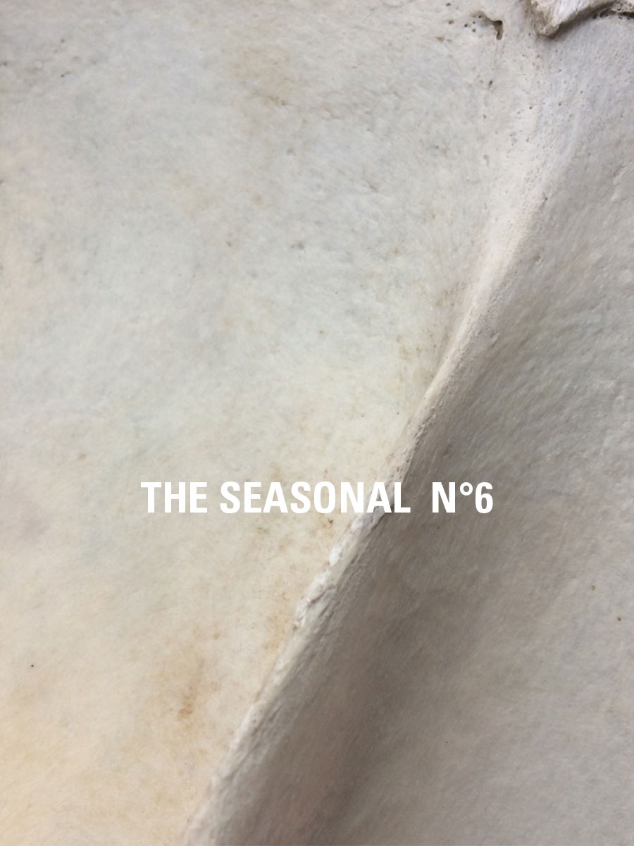 The Seasonal N° 6
